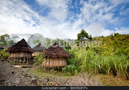 Traditional Hut stock photo, A traditional mountain village in Papua, Indonesia. by Tyler Olson