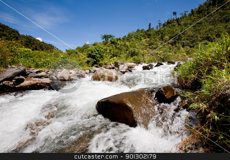 Fresh Mountain River stock photo, A fresh water stream in the mountains by Tyler Olson