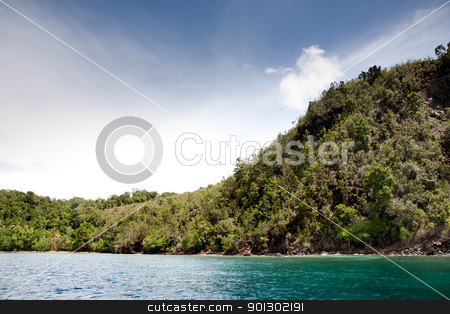 Tropical Beach stock photo, A tropical beach in Indonesia by Tyler Olson