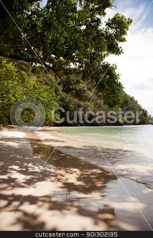 Tropical Beach stock photo, A tropical beach in Indonesia by Tyler Olson