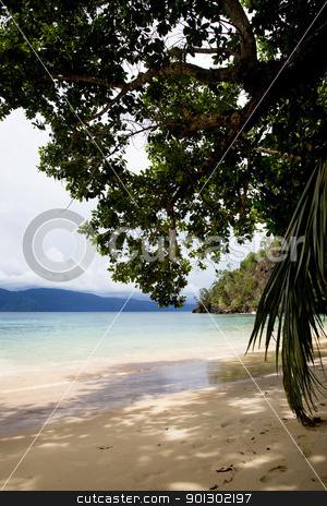 Beach Paradise stock photo, A private beach in Indonesia by Tyler Olson