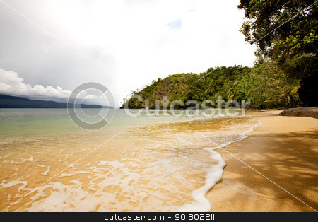 Tropical Private Beach stock photo, A tropical secluded beach by Tyler Olson