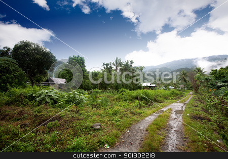 Indonesia stock photo, A small dirt road in the mountains in indonesia by Tyler Olson