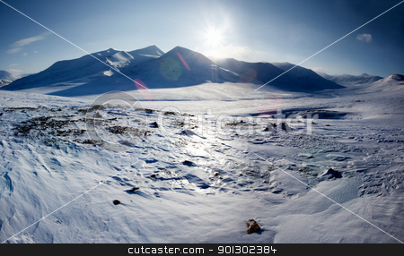 Snow Covered Mountain stock photo, A mountain landscape on the Island of Spitsbergen, Svalbard, Norway by Tyler Olson