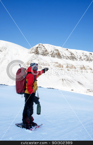 Adventure Guide stock photo, An adventure guide on snowshoes against a winter wilderness landscape by Tyler Olson