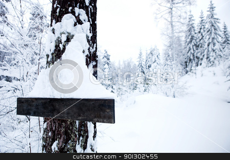 Winter Landscape - Blank Sign stock photo, A winter landscape with a blank sign by Tyler Olson