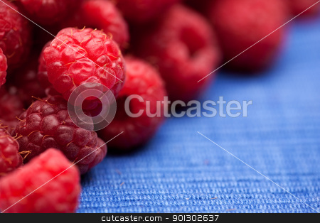 Raspberry stock photo, Fresh raspberries isolated on a blue cloth.  Shallow depth of field. by Tyler Olson