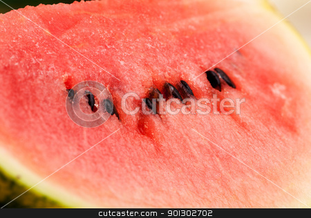 Watermelon Background stock photo, A ripe watermelon fruit background detail by Tyler Olson