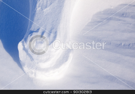 Polar Bear Foot Print stock photo, A foot print from a bolar bear with loose snow blown away by Tyler Olson