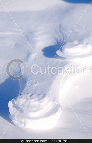 Polar Bear Track stock photo, A polar bear track in the snow by Tyler Olson