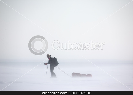 Arctic Expedition stock photo, A single person on a winter expedition in a snow storm by Tyler Olson