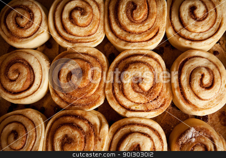 Cinnamon Buns stock photo, A pan of uncooked cinnamon buns ready for the oven by Tyler Olson