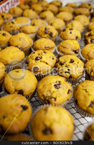 Fresh Muffins stock photo, Freshly baked chocolate chip pumpkin muffins by Tyler Olson