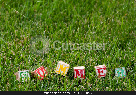 Summer stock photo, Wooden baby block spelling the word summer in grass by Tyler Olson