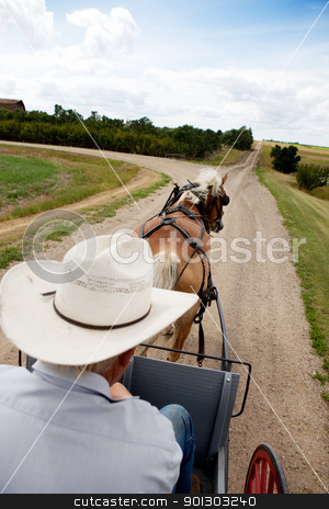 Horse and Buggy stock photo, A horse pulling a cart accross a beautiful Saskatchewan landscape by Tyler Olson