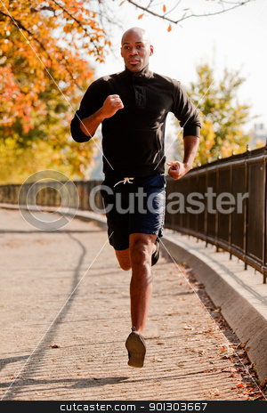 Running stock photo, An African American jogging in a park in the morning by Tyler Olson