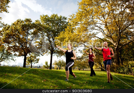 Martial Arts stock photo, A group of young adults training martial arts in the park by Tyler Olson