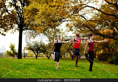 Stretching Fitness stock photo, A group of people in the park stretching by Tyler Olson