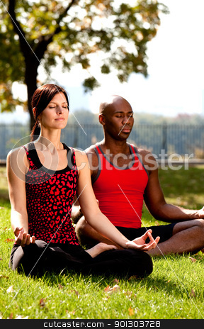 Yoga stock photo, Two people meditating in a city park on a sunny day by Tyler Olson
