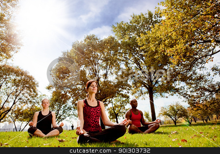 Park Yoga stock photo, A group of people doing yoga in a city park by Tyler Olson
