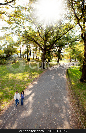 Couple Park Walk stock photo, A happy couple walking in the park on a sunny day by Tyler Olson
