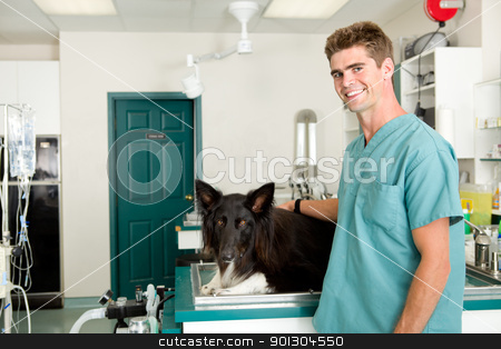 Vet Clinic stock photo, A small animal clinic with a dog on the surgery prep table by Tyler Olson