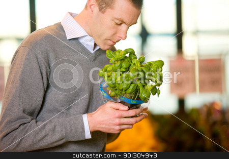Fresh Basil stock photo, A man buying fresh basil in the grocery store by Tyler Olson
