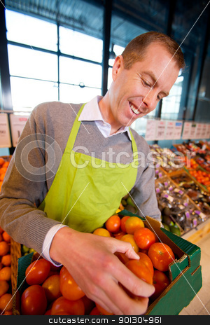 Happy Grocery Store Owner stock photo, A happy grocery store owner looking over a box of ripe tomatoes by Tyler Olson