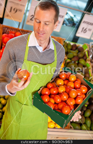 Grocery Store Clerk with Tomatoes stock photo, Closeup of a market assistant holding box of tomatoes in the supermarket by Tyler Olson