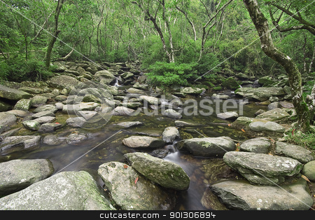 cascade of water through forest stock photo, cascade of water through forest by Keng po Leung