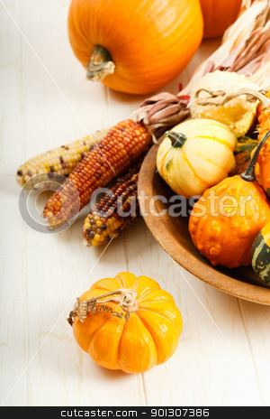 Colorful Autumn Vegetables stock photo, A display of colorful Fall squash and pumpkins by Karen Sarraga