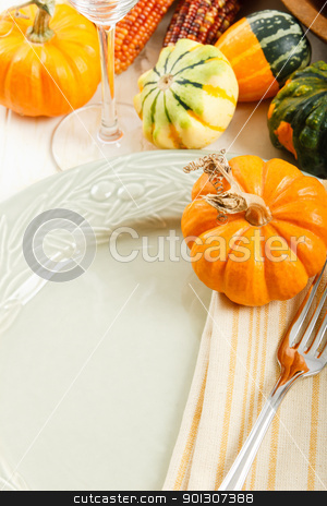 Table Setting with Fall Decoration stock photo, Autumn squash and pumpkin decorate a colorful Fall place setting with copy space by Karen Sarraga