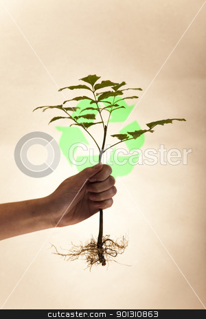 Plant and ecology stock photo, Recycling plant, ecology background. by Sebastian Duda
