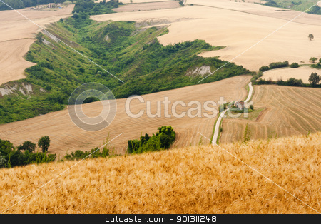 Marches (Italy) - Landscape at summer stock photo, Marches (Italy) - Landscape at summer by clodio