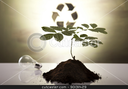 Plant and ecology, recycling stock photo, Recycling plant, ecology background. by Sebastian Duda