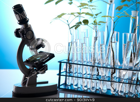 Plants  and laboratory  stock photo, A laboratory is a place where scientific research and experiments are conducted. Laboratories designed for processing specimens, such as environmental research or medical laboratories will have specialised machinery (automated analysers) designed to process many samples.  by Sebastian Duda