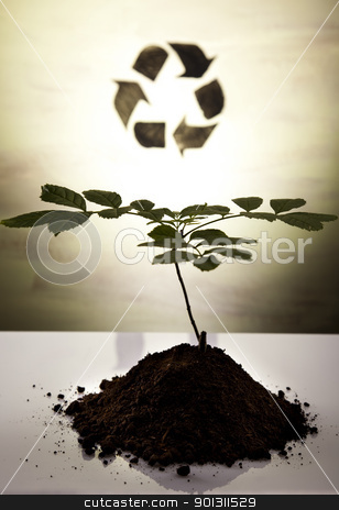 Eco plant stock photo, Recycling plant, ecology background. by Sebastian Duda