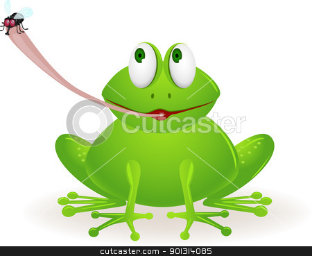 frog eat fly stock vector