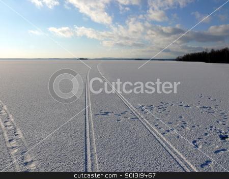 Winter landscape stock photo, Winter landscape by Stoyanov