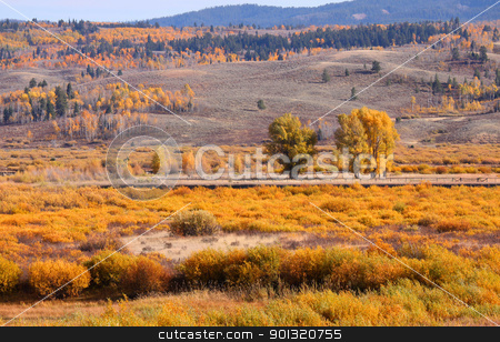 autumn landscape in Wyoming  stock photo, Scenic autumn landscape in Wyoming in autumn time by Sreedhar Yedlapati