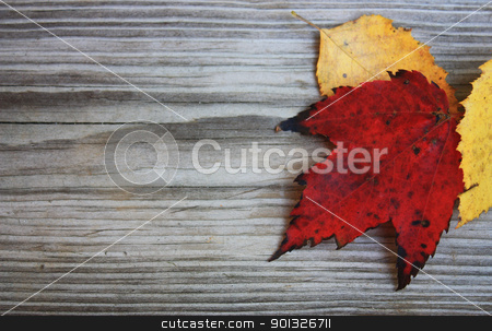 Autumn leaves on a board stock photo, Red and yellow autumn leaves on a weathered board by photolady