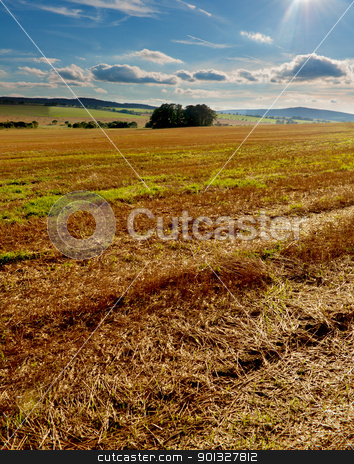 Harvested Field stock photo, Rural Landscape - Harvested Agricultural Field and Blue Sky - hdr by JAMDesign