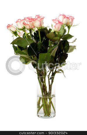 Roses in vase stock photo, Bouquet of rose flowers isolated on white background by Lars Christensen