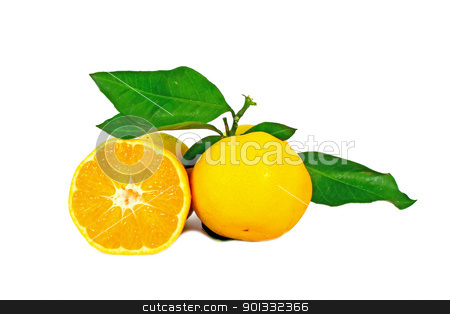Two ripe oranges stock photo, Two ripe oranges with leaves isolated on white by Borislav Marinic