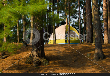 Tent Camping Campsite stock photo, Tent Camping  in the Woods at a Wilderness Campsite by Bill Mack
