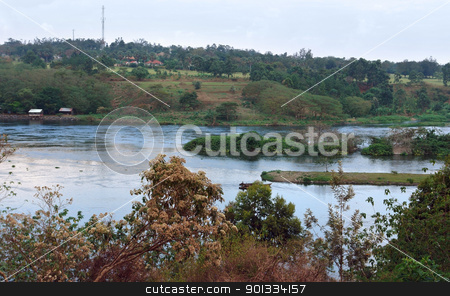River Nile source in Uganda stock photo, waterside scenery around River Nile source in Uganda (Africa) by prill