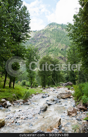 Mountain river stock photo, River on a mountain slope covered by trees by Iryna Rasko
