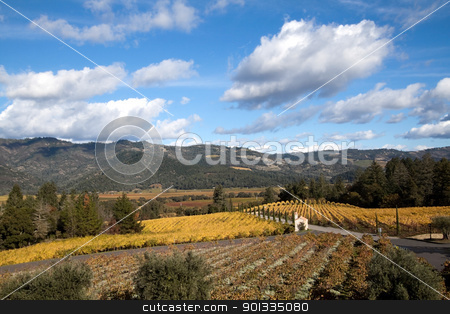 Wine Country stock photo, The hillsides of Napa Valley wine country by Kevin Tietz
