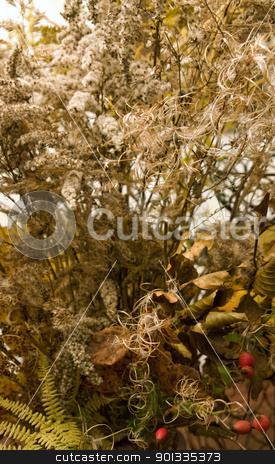 autumn background stock photo, full frame background with various autumn leaves in warm toned ambiance by prill