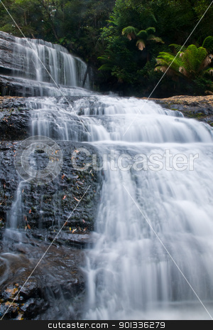 Waterfall in deep forest stock photo, The beautiful waterfall in forest, spring, long exposure, Lady Barron Falls, Mount Field National Park, in Tasmania Australia; Mt by Ulrich Schade